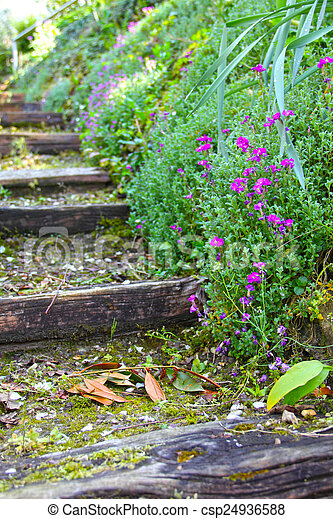Old stone stairs with ivy - csp24936588