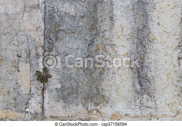 old stone wall as background - csp37156594