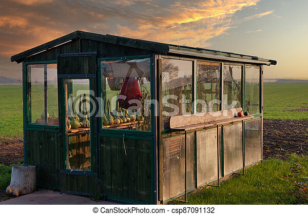 Old style greenhouse. - csp87091132
