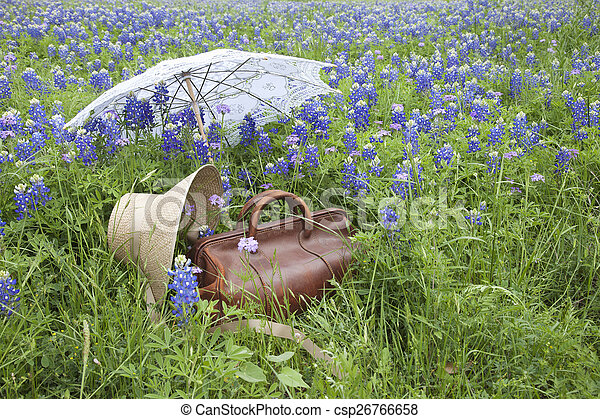 Old suitcase,bonnet and parasol in a field of bluebonnets - csp26766658