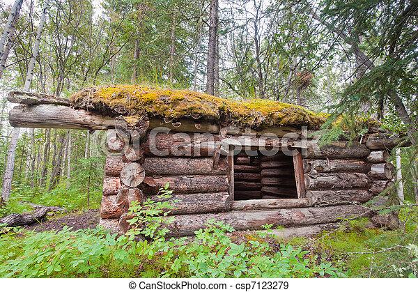 Old traditional log cabin rotting in Yukon taiga - csp7123279