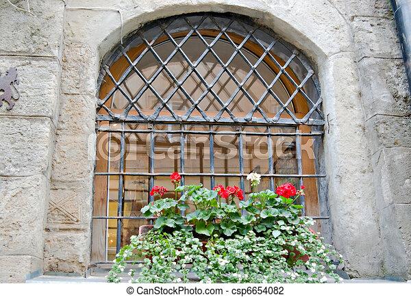 old window - csp6654082