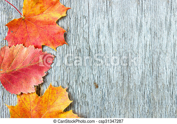 Old wooden background and autumnal leaves - csp31347287
