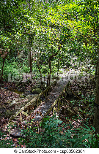 Old wooden bridge in jungle, Chiang Mai, Thailand - csp68562384
