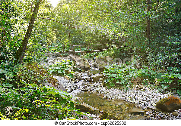 Old wooden bridge over a mountain creek in forest in the morning sunlight - csp62825382