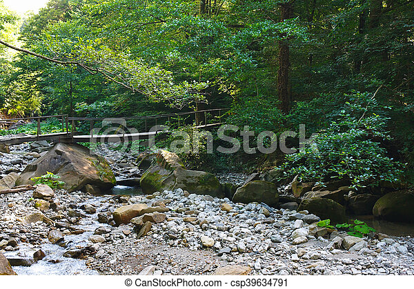Old wooden bridge over mountain creek in the forest - csp39634791