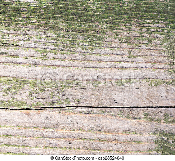 Old wooden surface painted with green paint - csp28524040