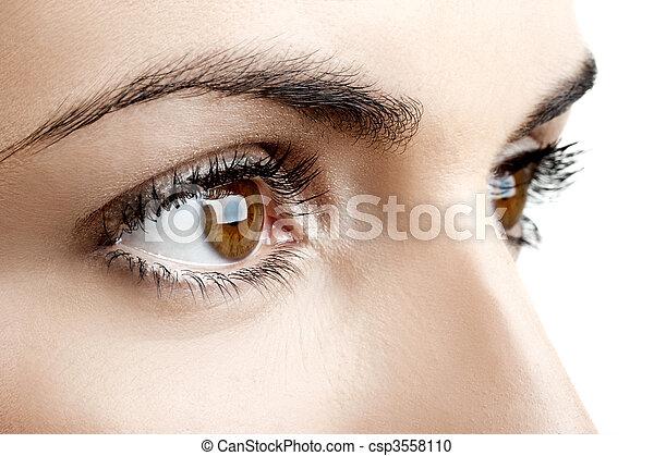 olhos, femininas - csp3558110