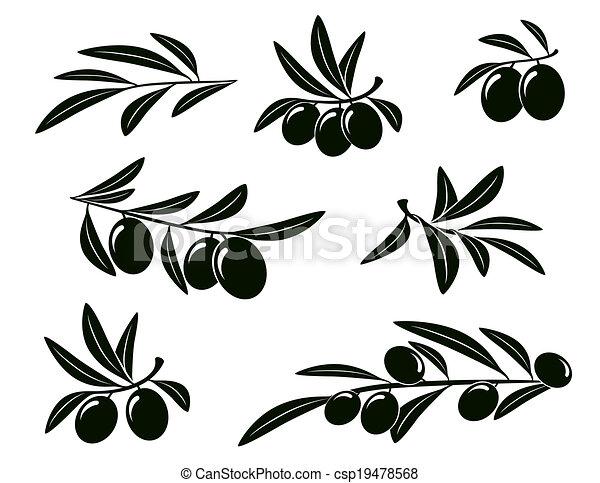 oliva, set, ramo - csp19478568