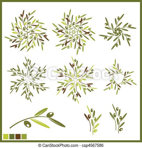 olive, communie - csp4567586