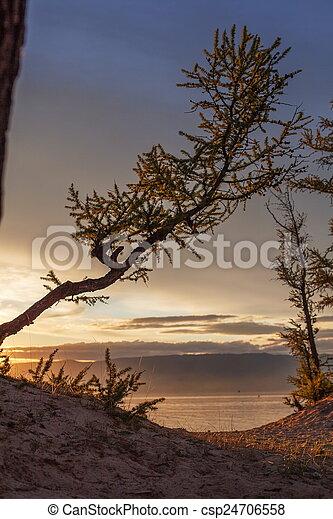 Olkhon Island - csp24706558