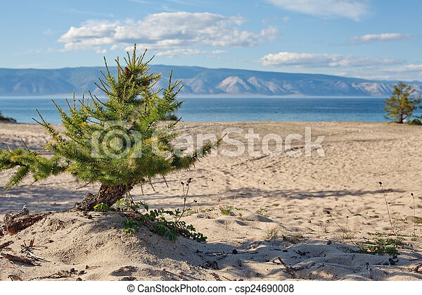 Olkhon Island - csp24690008