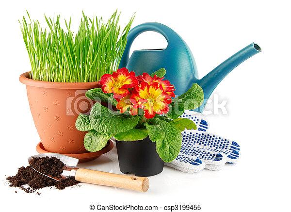 Hierba verde en la olla con flores rojas - csp3199455