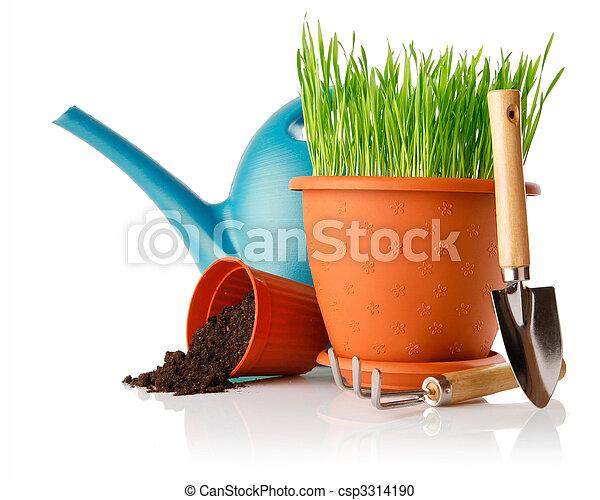 Hierba verde en la olla con herramientas de pala - csp3314190