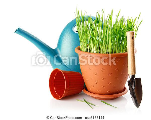Hierba verde en la olla con herramienta de pala - csp3168144