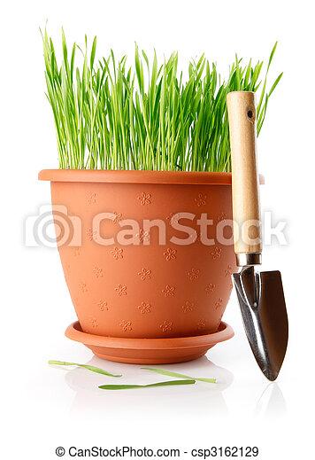 Hierba verde en la olla con herramientas de pala - csp3162129