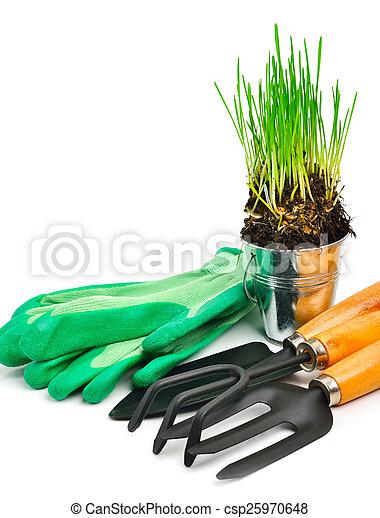 Rake, pala, guantes de goma, olla de acero con hierba verde - csp25970648