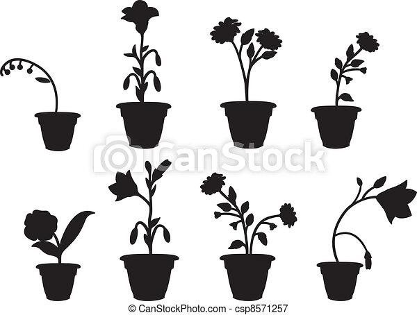 Ombres Pot Fleur Ombres Pots Fleur Huit