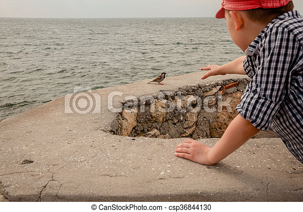 On the sea coast - csp36844130