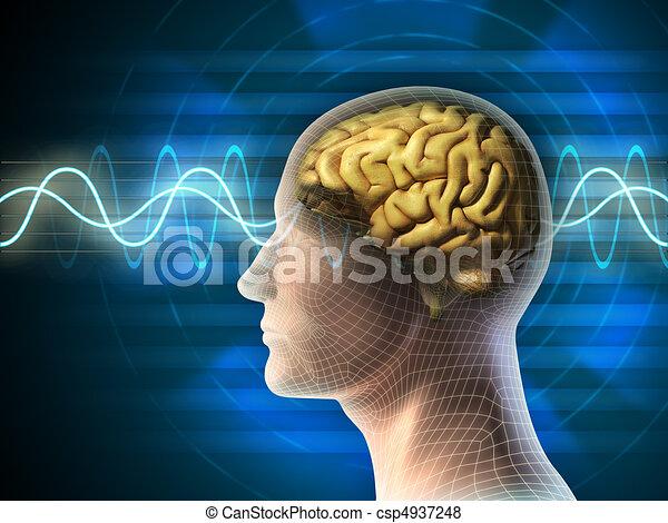 Ondas cerebrales - csp4937248