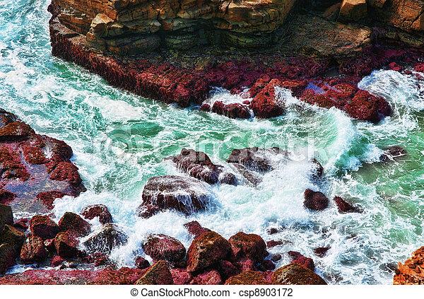 ondas, oceânicos, pedras - csp8903172