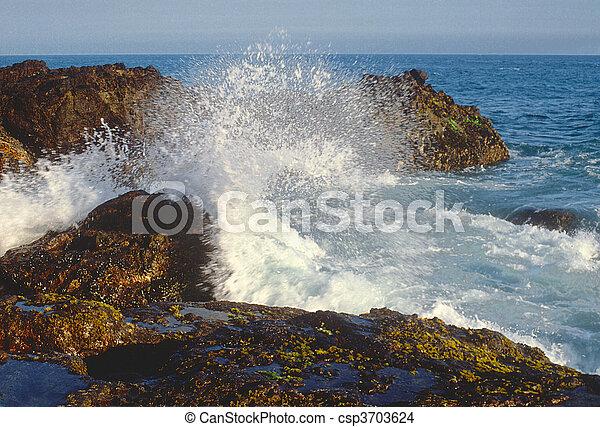ondas, pedras - csp3703624