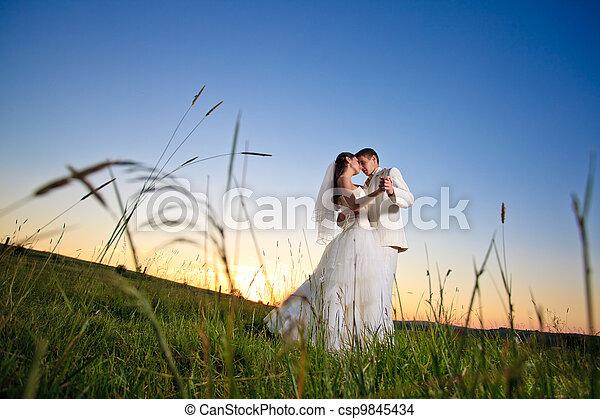 ondergaande zon , trouwfeest - csp9845434
