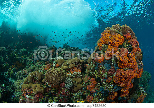 onderwater, wonder - csp7482680