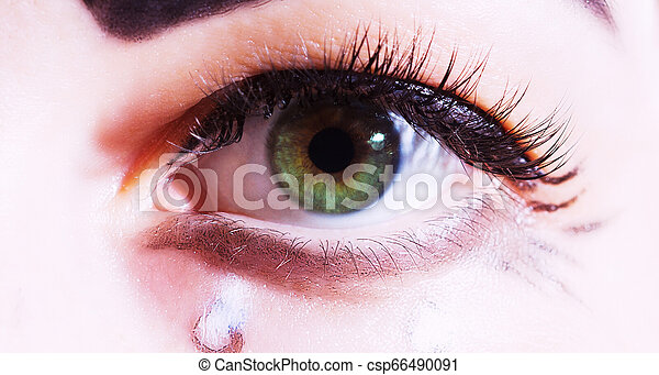 one art eye closeup macro - csp66490091