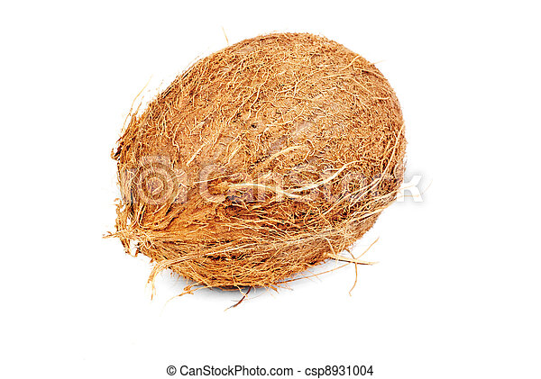 one coconut isolated on white - csp8931004