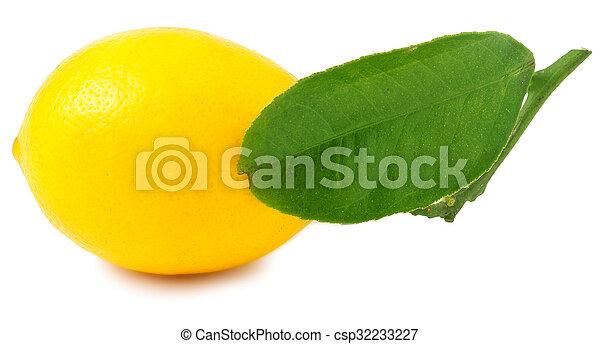 One lemon isolated on white - csp32233227