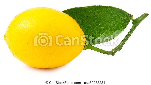One lemon isolated on white - csp32233231