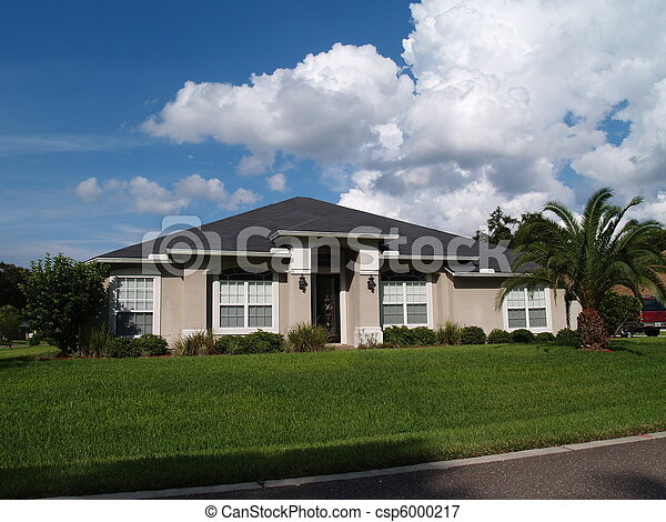 One Story Florida Stucco Home - csp6000217