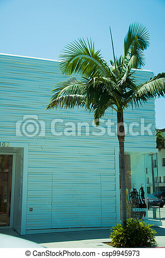 one way glass window fascinating one way glass windows on the facade of palm tree csp9945973 tree