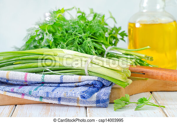 onion and other greens - csp14003995