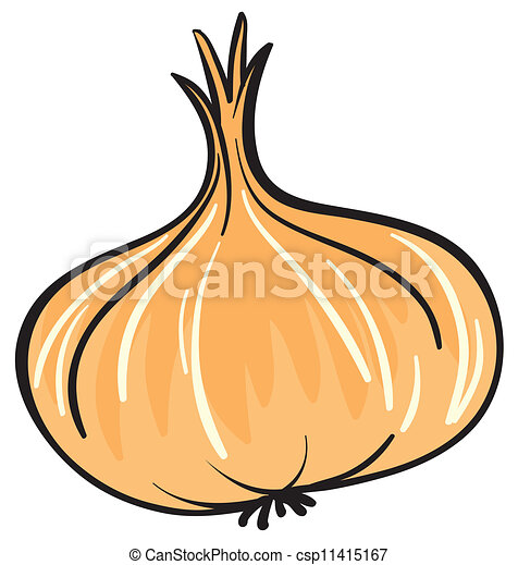 illustration of onion on a white background clip art vector search rh canstockphoto com Green Onions Vidalia Onions
