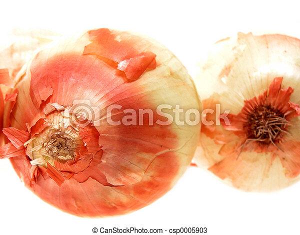 Onion Duo - csp0005903