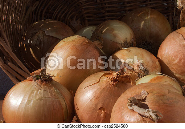 onion in basket - csp2524500