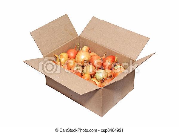 onion in carton on white background - csp8464931