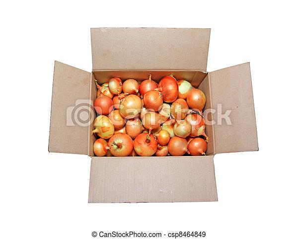 onion in carton on white background - csp8464849