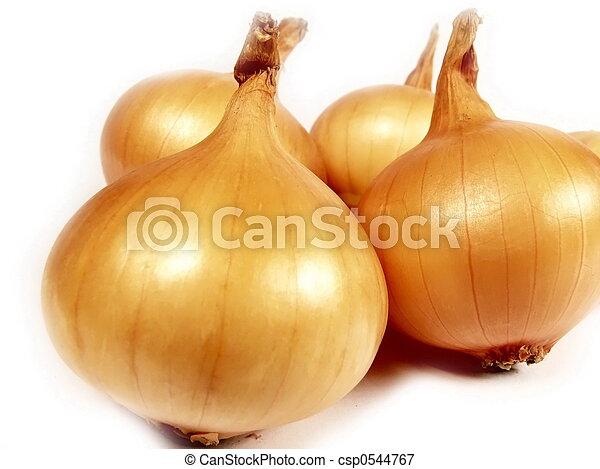 Onion on white - csp0544767