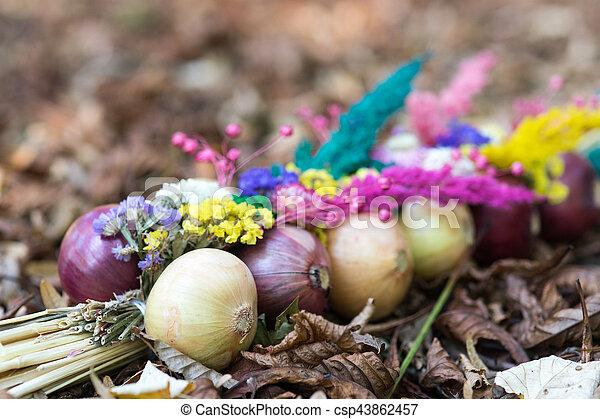 Onions decoration - csp43862457