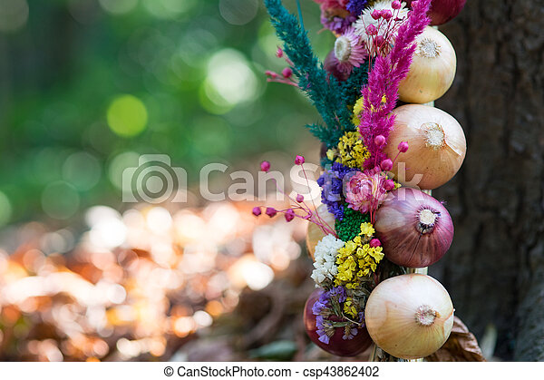 Onions decoration - csp43862402