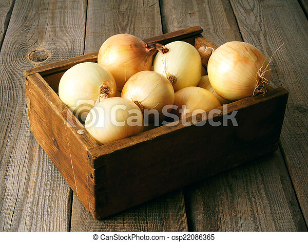 Onions in a box - csp22086365