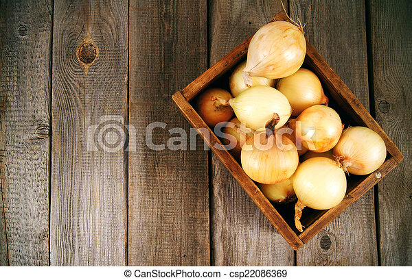 Onions in a box - csp22086369