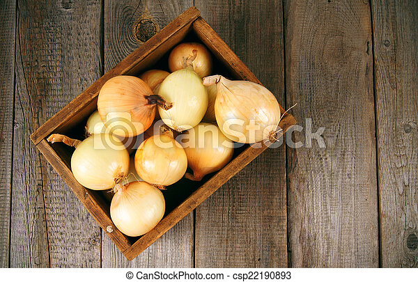 Onions in a box - csp22190893