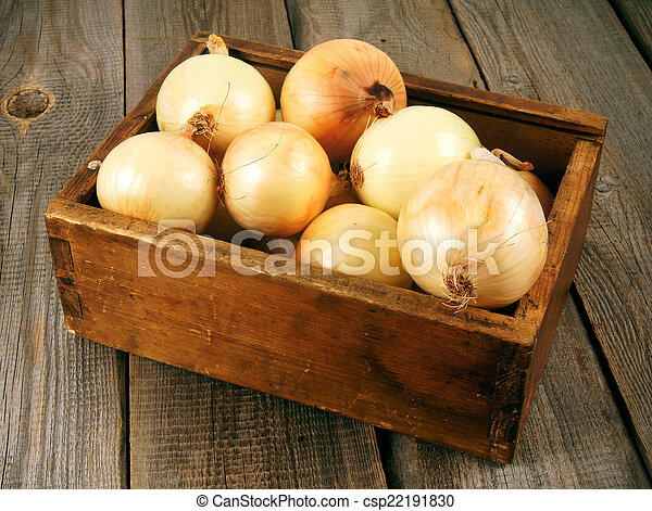 Onions in a box - csp22191830