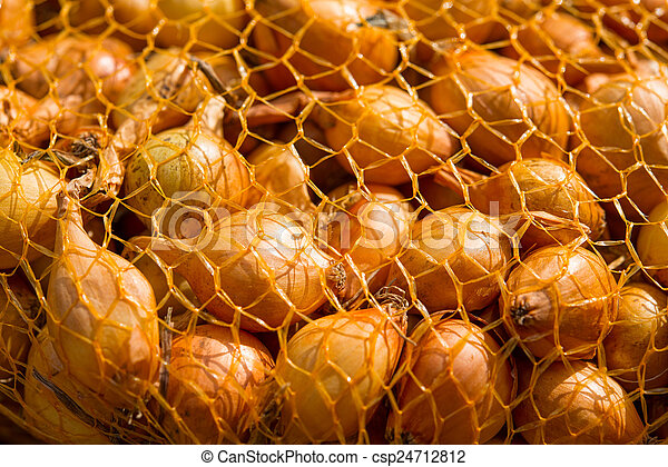 Onions in a Sack - csp24712812