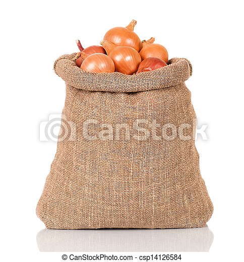 Onions in bag - csp14126584