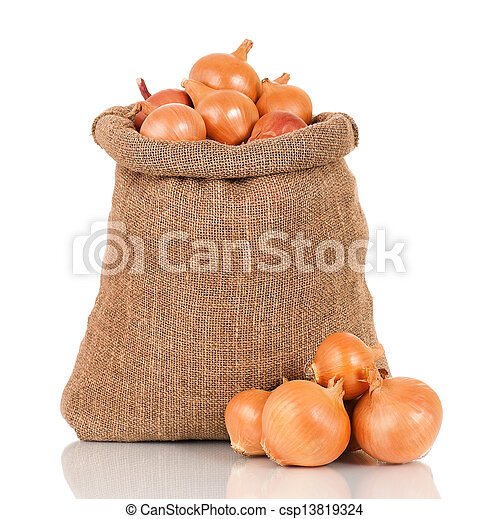 Onions in bag - csp13819324